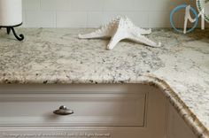 Bianco Romano Granite. May go this route.