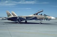F-14 Tomcat Aggressor