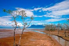 Bako National Park, Sarawak, Borneo | Flickr - Photo Sharing!