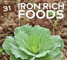 Great list of iron rich foods for vegetarians, vegans and anyone who wants to get more iron in their diet without eating a big steak. Even though I do enjoy a big steak ; Get Healthy, Healthy Tips, Healthy Habits, Healthy Choices, Foods With Iron, Iron Rich Foods, Health And Nutrition, Health And Wellness, Health Care