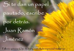 rioMoros: Google+