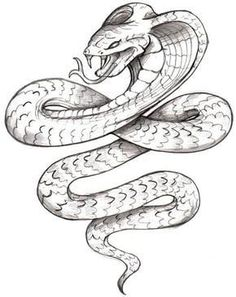 Snake Tattoo Designs - The Body is a Canvas