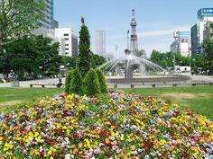 札幌観光のおすすめスポット50ヶ所まとめ(定番から穴場まで!) - Find Travel