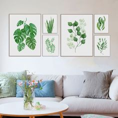 Pictures Green Plants - Compra lotes baratos de Pictures Green ...