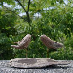 流木の鳥-246  2017    金澤 尚