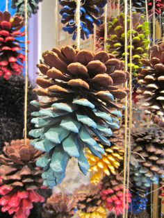 WINDOW DISPLAY: How cute would it be to have half painted pine cones hanging in the window for a Winter/Christmas display. Winter Window Display, Autumn Display, Autumn Window Displays, Christmas Window Display Retail, Pine Cone Decorations, Christmas Decorations, Fall Window Decorations, Craft Decorations, Craft Ideas