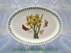 Portmeirion Botanic Garden Oval Plate, Narcissus