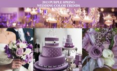 colors for 2013 weddings | ... wedding color trends Party Simplicity 2013 Purple Spring Wedding Color