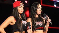Brie Bella news, videos, wiki, and biography Nxt Divas, Total Divas, Female Wrestlers, Wwe Wrestlers, Wwe Lucha, Brie Bella Wwe, Daniel Bryan Wwe, Famous Twins, Nikki And Brie Bella