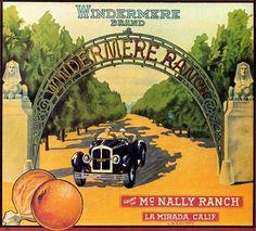 Citrus fruit crate label