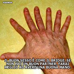 Sesso e bridge