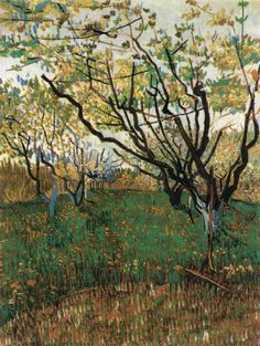 """Vincent van Gogh """"Orchard in Blossom""""/  March-April 1888, Arles/  Oil on canvas, 72 x 54 cm/  Metropolitan Museum of Art, New York"""