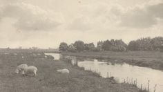 Peter Henry Emerson, On the River Bure, 1886, National Gallery of Art, Washington, D.C.