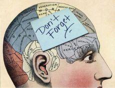 Вспомнить всё: пять упражнений для улучшения памяти