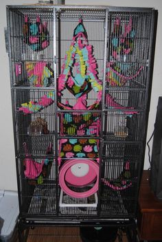 Adorable cage set up Pet Rat Cages, Ferret Cage, Hamster Cages, Pet Cage, Bird Cage, Chinchilla Cage, Sugar Glider Cage, Sugar Gliders, Sugar Glider Habitat