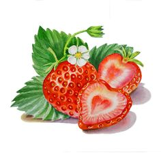 Strawberry Heart Painting ~ Mary Wald's Place - Watercolor by Irina Sztukowski - Strawberry Heart Fine Art Prints and Posters for Sale Strawberry Tattoo, Strawberry Art, Strawberry Kitchen, Strawberry Fields, Strawberry Drawing, L'art Du Fruit, Fruit Art, Glace Fruit, Heart Canvas