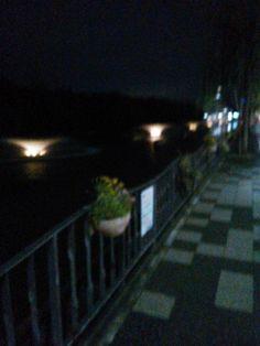 夜のお城の堀。きれいに小さなライトアップ!