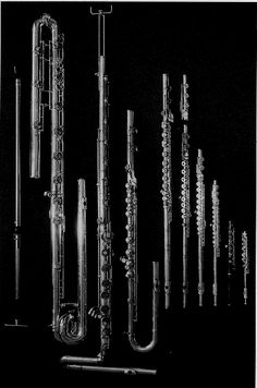 The complete flute family. The biggest I've ever seen in person was a bass and I used to own an alto.