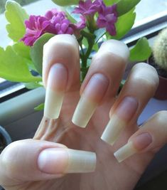 This is crazy! I can't believe this is my nails? Polygel Nails, Glam Nails, Classy Nails, Hair And Nails, Nails Only, Love Nails, Pretty Nails, Long Natural Nails, Nail Growth