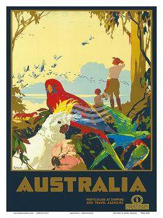 Tropical Queensland ~ Australia
