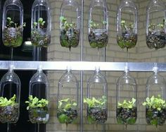 garden design used plastic bottles hanging - Diy Garden Projects Diy Garden, Herb Garden, Garden Projects, Gravel Garden, Garden Water, Garden Oasis, Garden Boxes, Garden Crafts, Garden Art