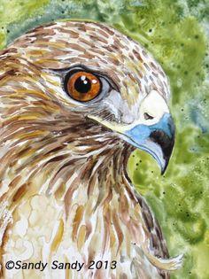 *SANDY SANDY ART*: Hawk Messenger  - SOLD - See step by step shots of this painting on SandySandyArt!  - Original Fine Art for Sale - © Sandy Sandy - http://www.sandysandyart.com/2013/02/hawk-messanger.html