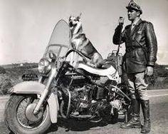 Carlos Miranda (São Paulo, 29 de julho de 1933),nasceu no bairro da Mooca. Ficou famoso ao interpretar o Inspetor Carlos do seriado de televisão O Vigilante Rodoviário, sempre acompanhado de Lobo,um cão pastor alemão que lembrava o famoso Rin-Tin-Tin.