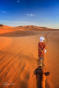 Sahara desert by Stefano  Viola
