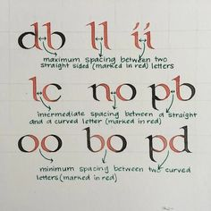 How To Get Started With The Foundational Hand (2020) | Lettering Daily Calligraphy Fonts Alphabet, Learn Calligraphy, Penmanship, Calligraphy For Beginners, Motivational Phrases, Writing Styles, Illuminated Letters, Letter Art, Get Started