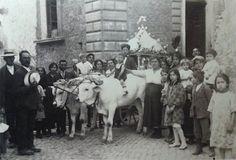 Un carro trainato da giovenche, in Via Seminario, incrocio con Via Leone (1930) [foto Archivio Pilone]