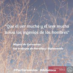 Campaña twitter #PorCervantes. Iniciativa de la Biblioteca Universidad de Cantabria en el IV Centenario de Miguel de Cervantes.