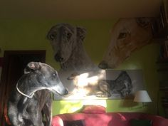 Mojave Blue Moon Guapa with my mural wwwlucillabollati.com #art#mural#greyhounds