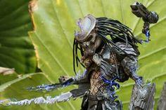 Predator by Alpizar