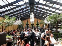 Isola Trattoria & Crudo Bar NYC