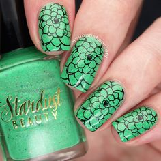 Nail Polish Society>> UberChic Beauty Succulents Mini Stamping Plate Review