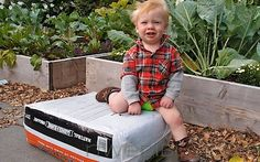Want to start a vegetable garden with your kids? Here's a great starting place, this post highlights the best vegetables to grow with kids.
