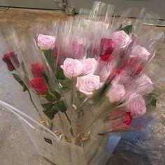 Flowers Nature, My Flower, Pretty In Pink, Flower Power, Beautiful Flowers, Simple Aesthetic, Flower Aesthetic, Pink Aesthetic, Space Painting
