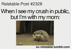 relatable gifs | Funny Relatable Posts About Crushes -----> that's so cute and accurate :D