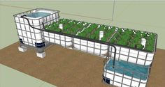 aquaponics sump system - Google Search