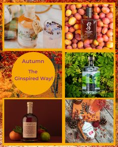 Autumn in Scotland is one of the most beautiful times to plan your next visit here. With an abundance of Scottish Gins to choose from, we've matched up some that have that autumnal feeling to them. Enjoy.