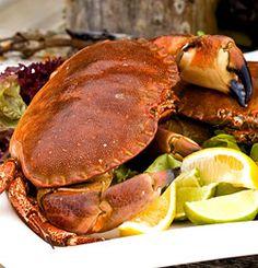 Fersk krabbe med god dressing
