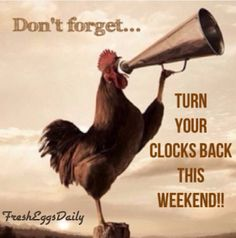 For those that have Daylight Savings the clocks go back one hour this weekend. Yea! For one extra hour of sleep. ~Me  #daylightsavingstime