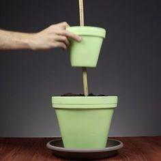 Easy Garden Design Ideas You Can Do Yourself
