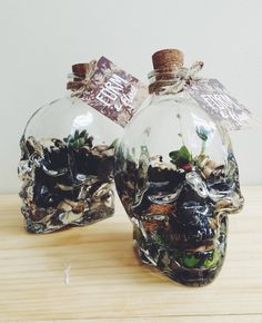 Our Skull Terrariums would be a beautiful addition to your desk, bookshelf, or other well-lit nook. PLEASE NOTE THIS ITEM IS ONLY FOR PICKUP IN