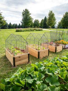 Veg Garden, Vegetable Garden Design, Garden Boxes, Garden Seeds, Garden Design Plans, Home Garden Design, Raised Garden Beds, Raised Beds, Raised Gardens