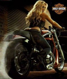 Harley Davidson Photo: This Photo was uploaded by windstarmolly. Find other Harley Davidson pictures and photos or upload your own with Photobucket free. Lady Biker, Biker Girl, Gif Motos, Maserati, Ferrari, Motard Sexy, Harley Davidson, Chicks On Bikes, Hot Girls
