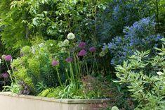 De volle begroeiing zorgt voor een knus effect. Je waant je in deze tuin in een levend schilderij. Alle bloeiende planten trekken vele vlinders en bijen. Plant Design, Garden Design, Bee Friendly Plants, Planting, Landscape, Image, Color, Gardens, Plants