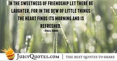 We have the best quotes about friendship. Find the perfect quotes to share with your friends and your best friend. We have picture quotes for each. Best Friend Quotes, Best Quotes, Best Friendship Quotes, Perfection Quotes, Picture Quotes, Really Cool Stuff, Laughter, Let It Be, Quotes Of Best Friends