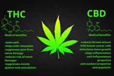 There are over 500 marijuana compounds but only 85 are cannabinoids. The most known and most important are THC and CBD. With amazing medical benefits
