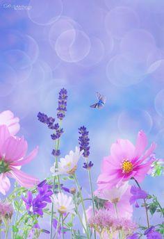 ~ Easiness of summer ~ by Jasna Matz**